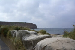 Helgoland_S_Gal_2020_003