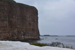 Helgoland_S_Gal_2020_011