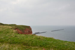 Helgoland_S_Gal_2020_024
