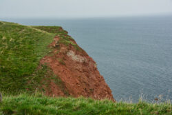 Helgoland_S_Gal_2020_026