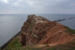 Helgoland_S_Gal_2020_032