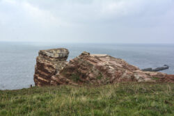 Helgoland_S_Gal_2020_038