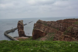 Helgoland_S_Gal_2020_050