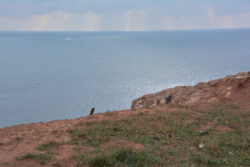 Helgoland_S_Gal_2020_055