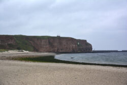 Helgoland_S_Gal_2020_086
