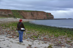 Helgoland_S_Gal_2020_214