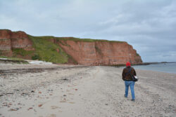 Helgoland_S_Gal_2020_216