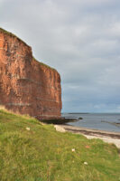 Helgoland_S_Gal_2020_220