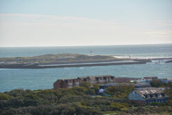 Helgoland_S_Gal_2020_224