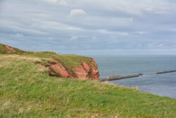 Helgoland_S_Gal_2020_230