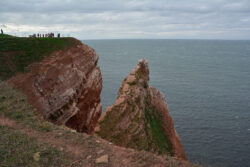 Helgoland_S_Gal_2020_232
