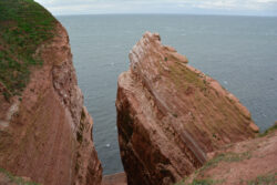Helgoland_S_Gal_2020_233