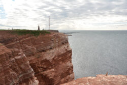 Helgoland_S_Gal_2020_244