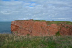 Helgoland_S_Gal_2020_253