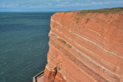 Helgoland_S_Gal_2020_256