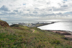 Helgoland_S_Gal_2020_258