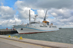 Helgoland_S_Gal_2020_264
