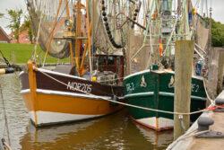Nordsee_2021_Gal_013