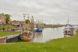 Nordsee_2021_Gal_025