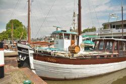 Nordsee_2021_Gal_275