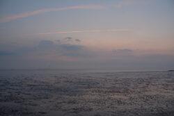 Nordsee_2021_Gal_318