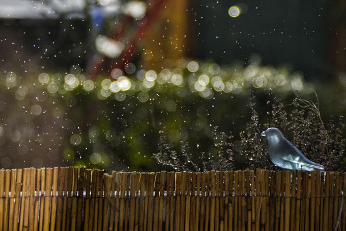 Regen_02
