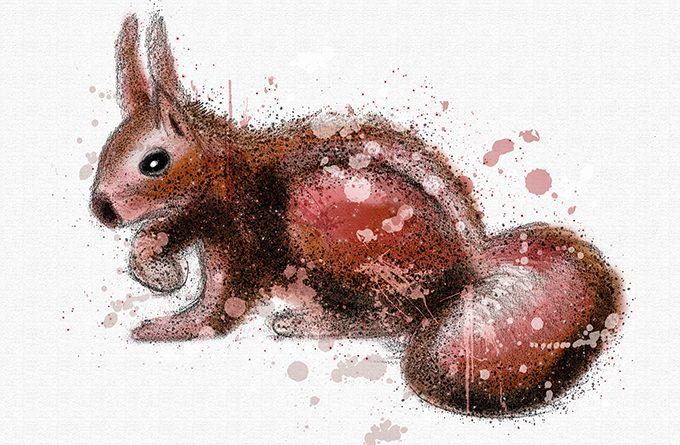 Eichhörnchen gemalt